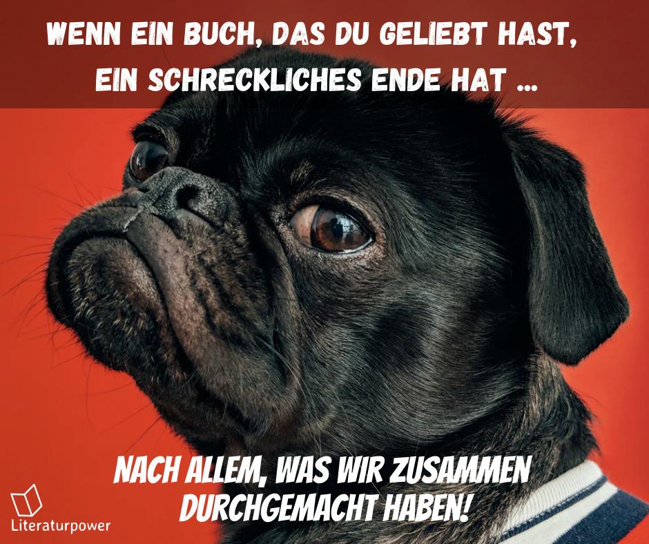 Meme Hundsbuch